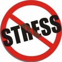 4 Natural & Effective Ways Of Dealing With Stress