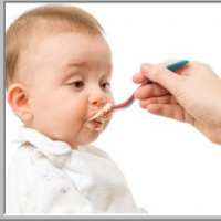 Baby Food-what They Eat Can Influence Their Healthy