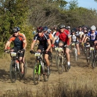A Bike Ride In the Bush  -  veld, Babba\'s Lodge – A Family Outing