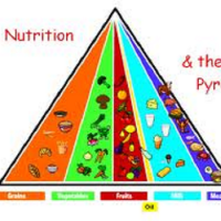 A Fact Of Nutrition,proteins