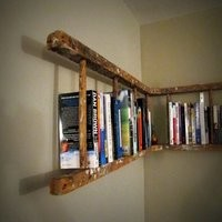 A Ladder for Many Uses