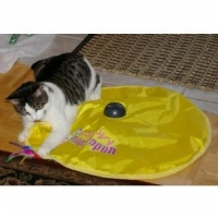 Action Cat Toys