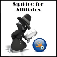 An Affiliate Marketer's Guide to Squidoo