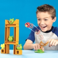Angry Birds - Whats All This About A Real Life Game?