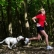 Animal Behaviour – Runners And their Dogs