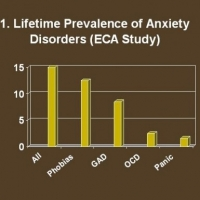 Anxiety And Fear  -  Panic Attacks