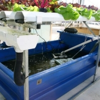 Aquaponic Requirements