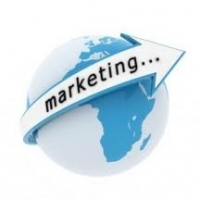 Article Marketing For Beginers