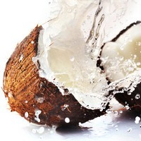 Awesome Things About Coconut Fruits