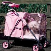 Bichon Frise Dog Stroller  -  Should You Buy One