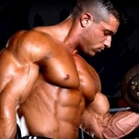 Body Building Guide for Begginers