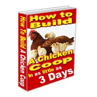 Build A Chicken Coop – The New Old Way To Keep The Food Supply In House
