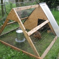 Build Chicken Coop - A Modern Day Project