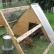 Build Chicken Coop - Questions And Answers