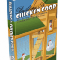 Building Plans for Chicken Coop: is it Necessary?