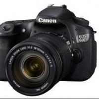 Canon Eos 60d Review: Why Should You Love This Camera Like I Do
