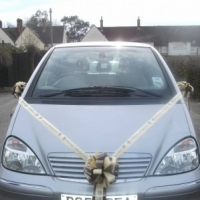 Car Bows  -  How To Decorate Your Wedding Car