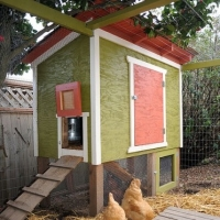 Chicken Coop Designs And Plans - Advice
