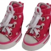 Choose Fashionable Shoes for Your Dogs