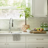 Choosing White Kitchen Cabinets is Not A Bad Idea