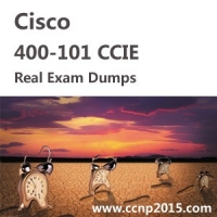 Cisco 400  -  101 Ccie Online Questions