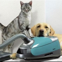 Cleaning Products And Pets