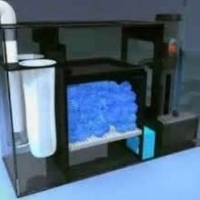 Coral Reef Filtration