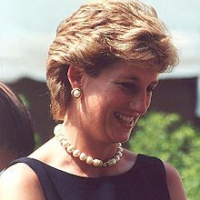 Diana Was Assassinated By British Special Forces  -  Really?