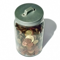 Diet Programs on A Budget    -    How to Lose Weight Without Breaking the Bank