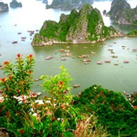 Discover Halong Bay From Bai Tho Mountain