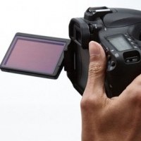 Do Not Cheap Out With Canon 60d Lenses, Buy Right 60d Lens