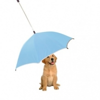 Dog Umbrellas And Other Pet Accessories