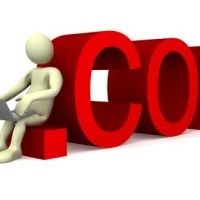 Domain Name Registration Process Guide