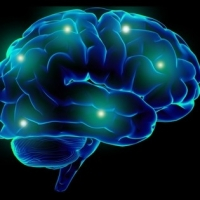 Epilepsy Facts Treatment AND Recovery