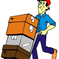 Excitement Experienced While Moving With Guildford Removals