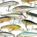 Finding Fishing Lures Online