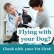 Flying With Dogs