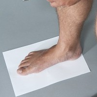 Foot Types And Arch Types