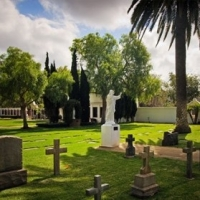 Funeral Service Providers: Choosing A Director