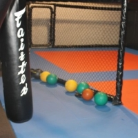 Get Fit And Look Like A Mma Fighter