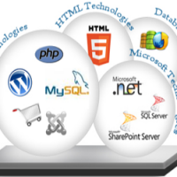 Guidelines to Choose the Best Web Development Company