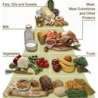Healthy Food Plan - For Those Who Do Not Have Enough Time To Prepare A Healthy Meal