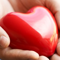 Heart Attack Risk for Women May Be Set Before She is Born