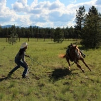 Horse Training Can Be Boring