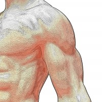 How to Build Muscles With the Right Foods