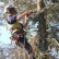 How to Find A Reliable Tree Surgeon In Hanwell