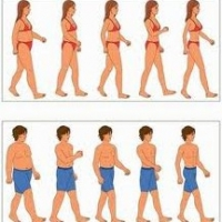 How to Gain Muscle And Lose Fat  -  Three Simple Ways