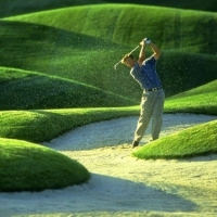 How to Golf  -  Not Just for the Pros