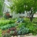 How to Grow Vegetables In Your Front Yard