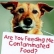 How to Keep Your Dog Safe In A Dog Food Recall